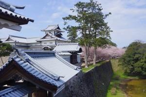 菱櫓と内堀桜並木(河北門二の門から)