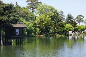 霞が池の新緑